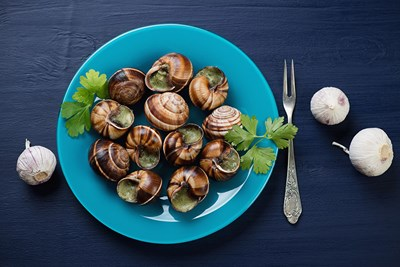 a plate of escargot