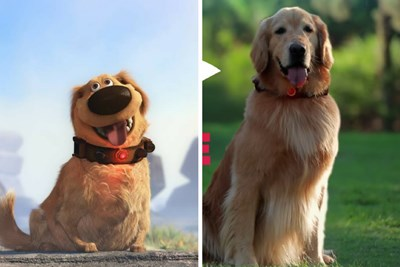 Dug from Disney-Pixar's 'Up' Surprises People in the Park