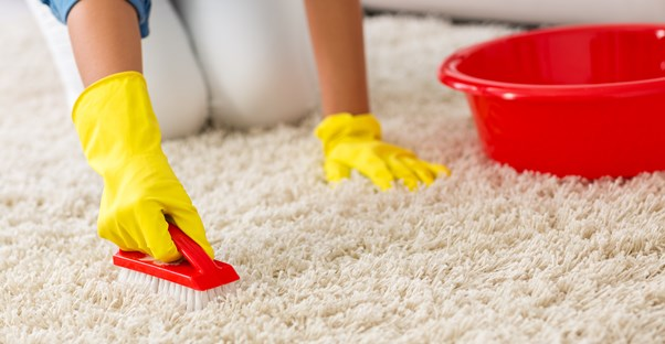 Carpet Cleaning 101: Best Methods for Carpet Stain Removal
