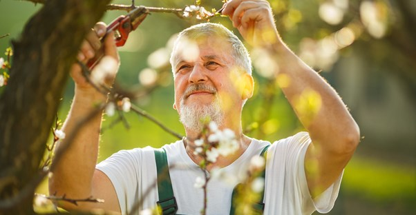 a man with arthritis enjoying his gardening hobby